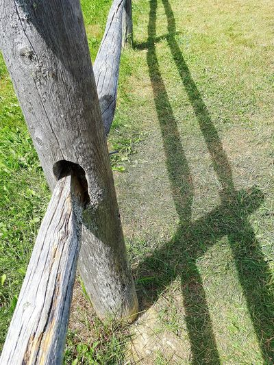 Fencepost Nature Sunlight Low Section Day Outdoors Grass Shadow Fence Shadow Rethink Things
