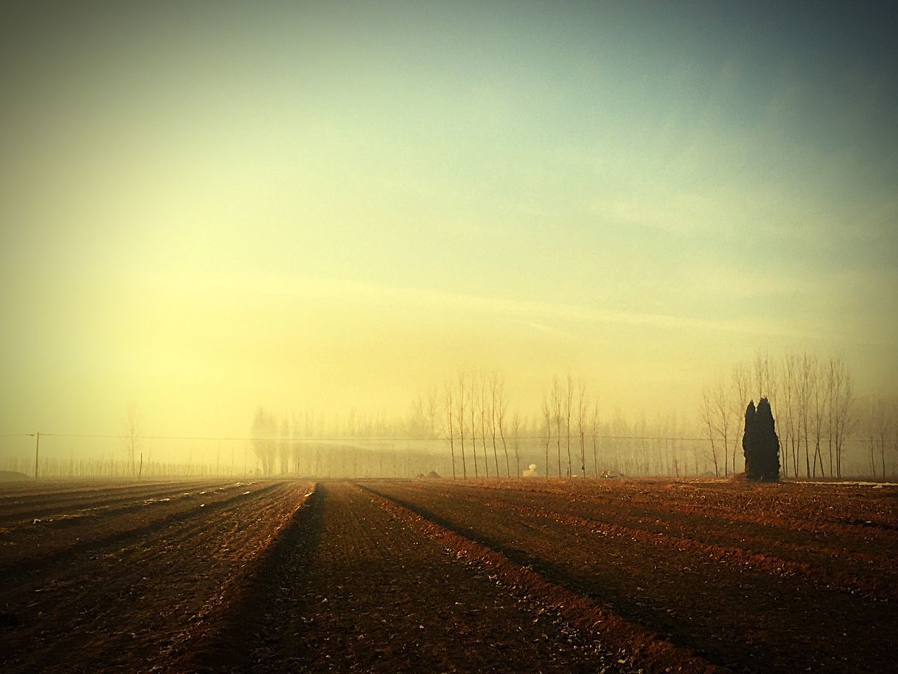 Narrow Road Along Landscape