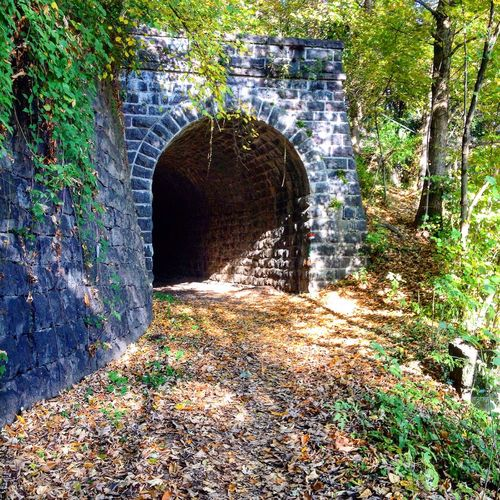 Vecchia tramvia Arch Architecture History Built Structure Day Tunnel Plant No People Sunlight Old Ruin Outdoors Tree Nature Ancient Civilization  First Eyeem Photo