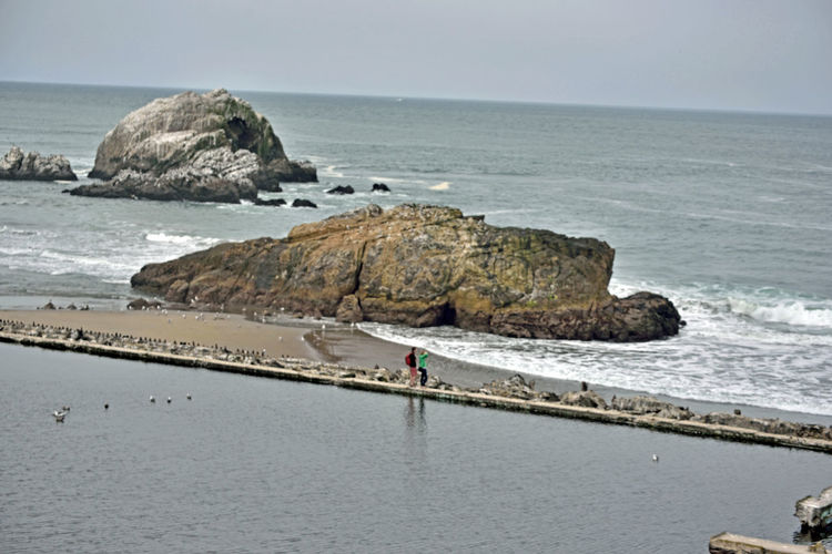 Sites Along Coastal Trail To Eagle's Point 9 Lands End Lookout San Francisco Ca Sutro Bath Ruins  1895 Pacific Ocean Seal Rocks Rocky Shoreline Swift Tides Treacherous Waters Seaside Seascape Site Of Several Shipwrecks Seaview Seashore Dense Fog Oceanfront Golden Gate National Recreation Area Landscape Landscape_photography Landscape_Collection
