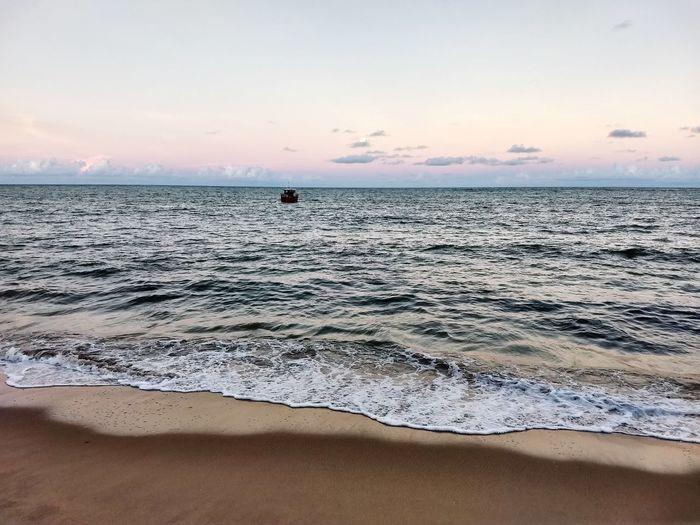 mar Flamingo Swimming Low Tide Seascape Coast Romantic Sky Coastal Feature