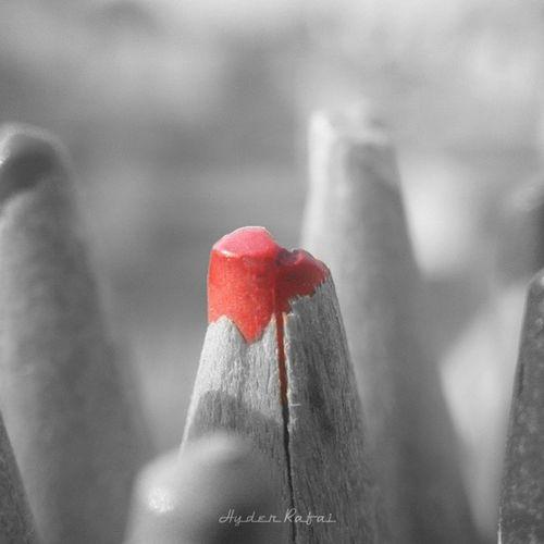 Picsart Fx_hdr Macro BNS Bns_colorsplash Bns_closeup Colorsplash_of_our_world Closeup Greatmacro Hdr_pics Hdr_dr Ig_closeups Igcapturesclub Nature Nuc_bw Ptkedits SquidCam Tgif_colorsplash Tgif_nature Pencils Art Red