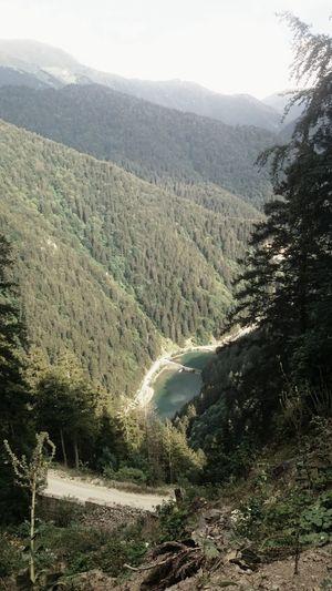 Mountain Tree Landscape Sky Mountain Road Rocky Mountains
