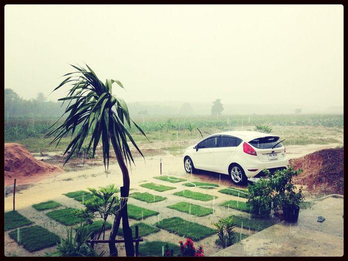 เวลาล้างรถด้วยตัวเองเสร็จ แล้วฝนตก ช่างเป็นอะไรที่แสนเจ็บปวดนะ!!