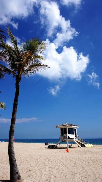 Beach Beautiful Nature light, daytime, sand, and sun, Miles Miles Miles miami, florida, sea, The Great Outdoors - 2017 EyeEm Awards
