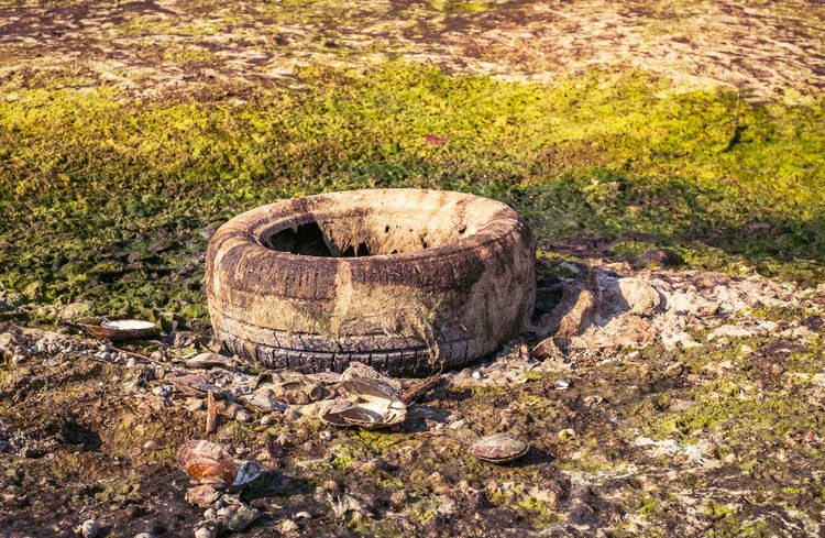 An old car tire covered with algae polluting the beach Polution Is All Around The World Abandoned Car Tire Day Garbage Grass Nature No People Old Car Tire Old Tires Outdoors Poluted Earth Polution Polution Is Everywh Tire Tire Track