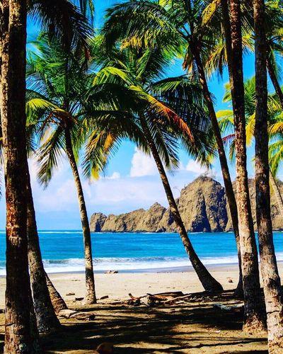 Playa Carrillo 💖 Beach #sun #nature #water #TagsForLikes.com #TagsForLikesApp #TFLers #ocean #lake #instagood #photooftheday #beautiful #sky #clouds #cloudporn #fun #pretty #sand #reflection #amazing #beauty #beautiful #shore #waterfoam #seashore #waves #wave First Eyeem Photo