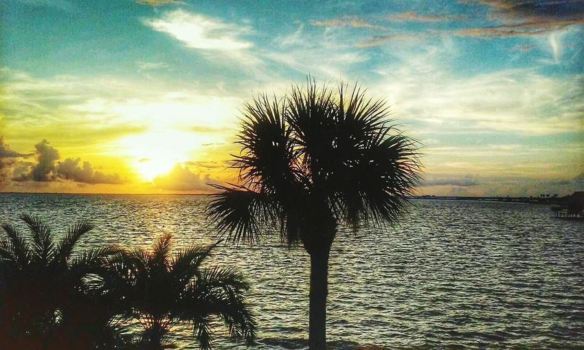 Enjoying Life Naturelovers No Location Needed Sunrise_sunsets_aroundworld Beautiful EyeEm Best Shots