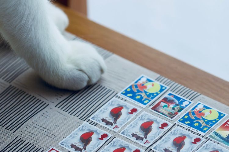 Close up of postal stamps First Class First Class Stamps Animal Themes Close-up Domestic Animals Domestic Cat Indoors  Pets Philatelist Postage Postage Stamp Postal Postal Service Royal Mail Send Stamps Table