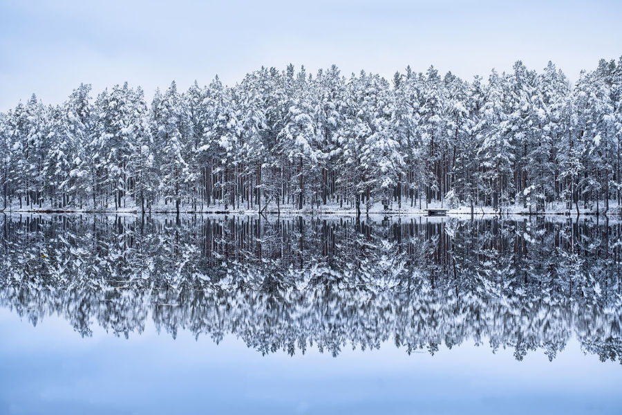 Scenic landscape with lake reflection and snow at winter evening Finland Light Moment Of Silence Winter Wintertime Beauty In Nature Blue Cold Temperature Evening Forest Frozen Lake Landscape Nature No People Outdoors Peaceful Reflection Scenics Snow Tranquil Scene Tranquility Tree Water Winter
