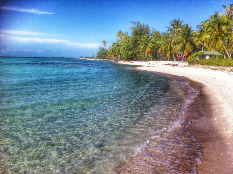 Tikehau French Polynesia Paradise Beach Pink Sand Tuamotu Paradise Ilsland Paradise On Earth Landscapes With WhiteWall