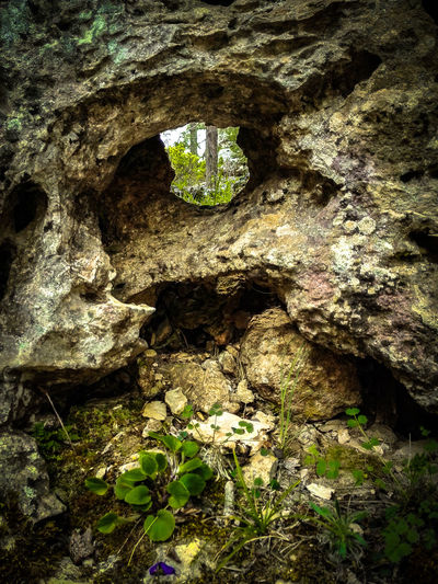 Eye Face On Rock Rock Formation Rocks Hole In The Rock Nature Nature_collection Check This Out EyeEm Gallery Cuenca, Spain Cuenca Las Majadas Majadas Nature Photography Travel Learn & Shoot: Balancing Elements Rock Formations Colour Of Life The Magic Mission