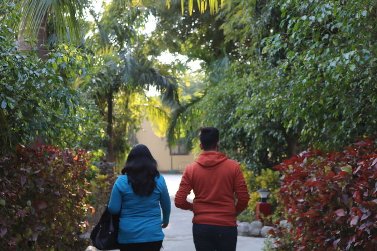 Rear view of couple walking on plants
