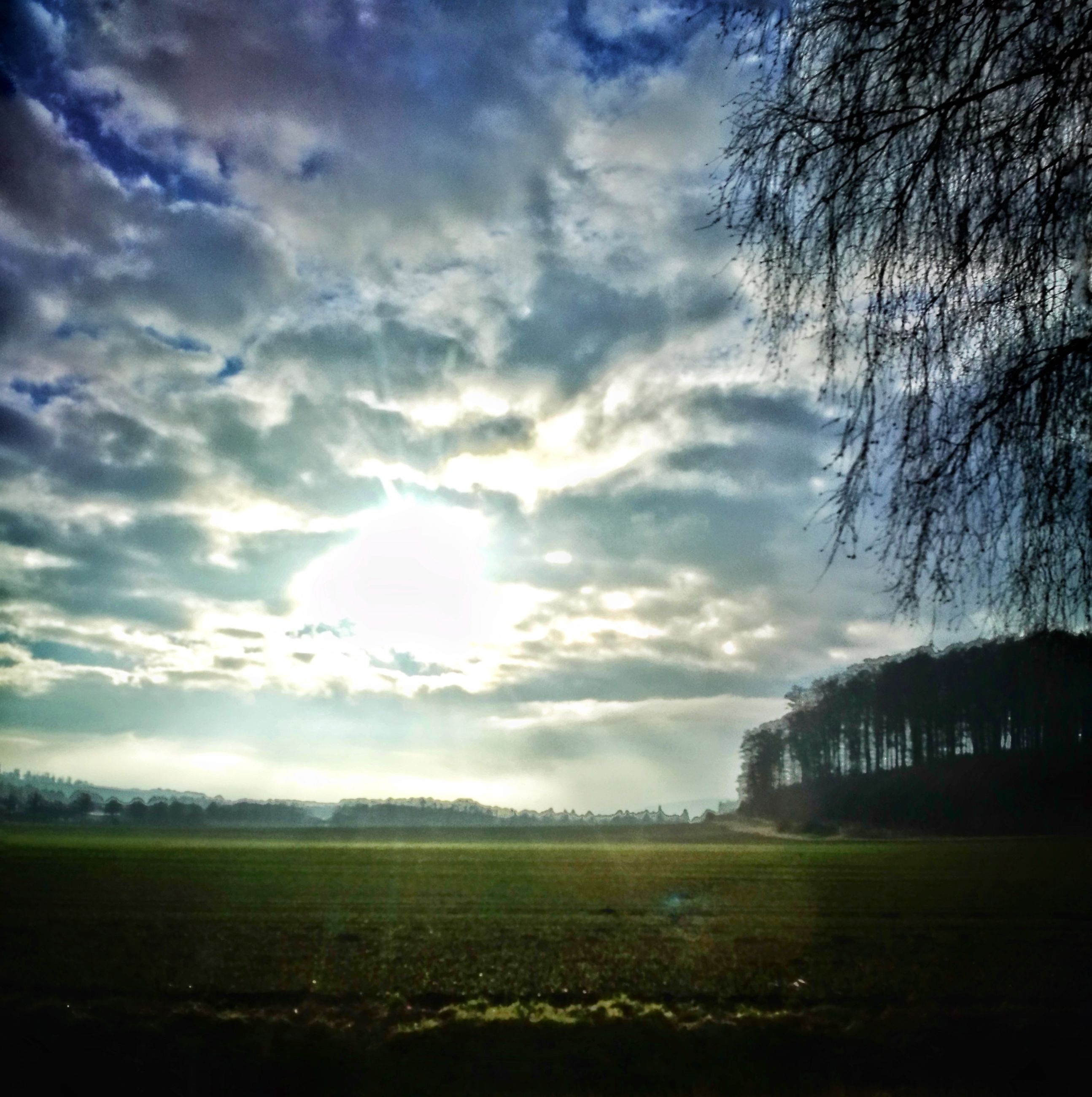 sky, tree, cloud - sky, architecture, built structure, grass, nature, no people, building exterior, growth, outdoors, beauty in nature, scenics, day