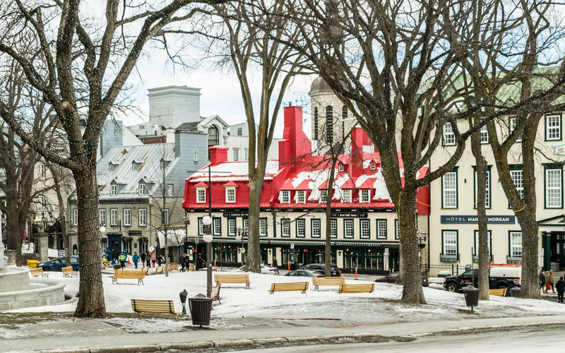 Vieux-Québec - Old town Building Exterior Architecture Snow Cold Temperature Outdoors Day Winter Street Frozen Built Structure Tree City Plant Bare Tree Building Nature Incidental People Red Sky Quebec Old Town Travel Nikonphotography Nikonphotographer Travel Photography