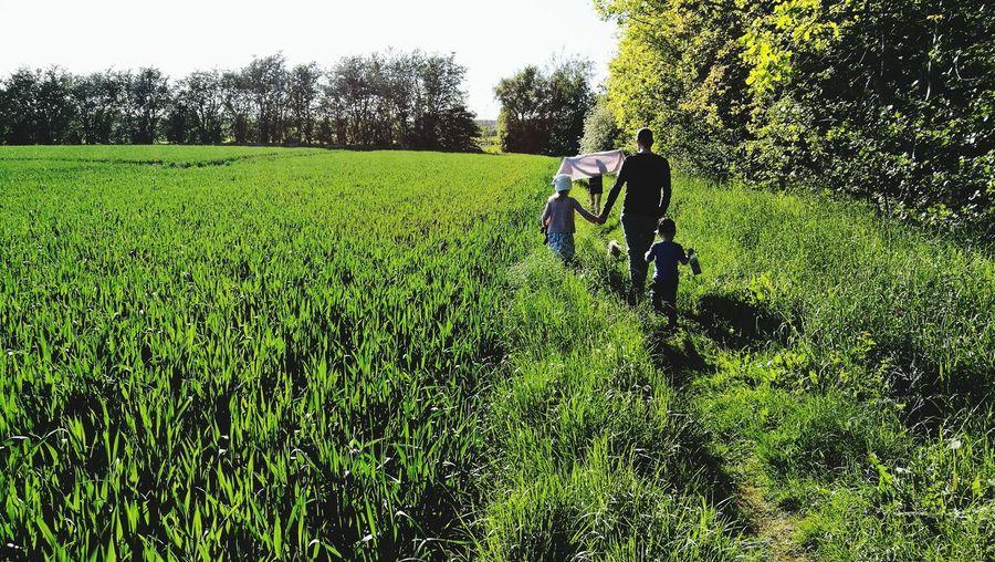 Rear view of people walking in field