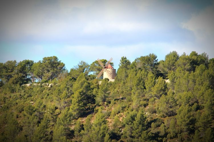Moulin Arbres France🇫🇷 Ciel Rousset Beauty In Nature Nature