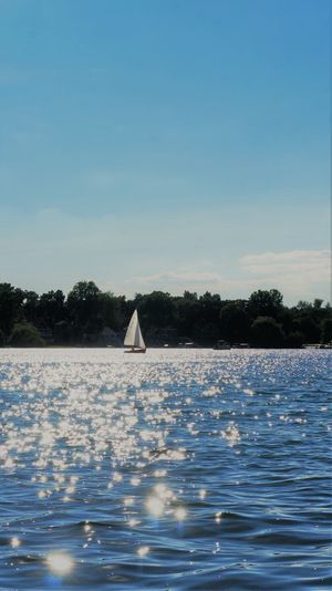 Summer Sailing Sparkles Dreamy Blue Eyes Beauty In Nature Blue Day Floating On Water Mode Of Transportation Nature Nautical Vessel No People Outdoors Plant Sailboat Sailing Scenics - Nature Sea Sky Tranquil Scene Tranquility Transportation Tree Water Waterfront White Color