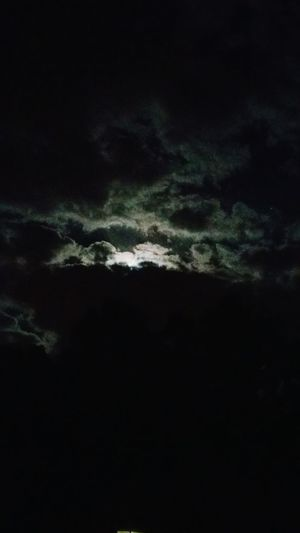 Love the night