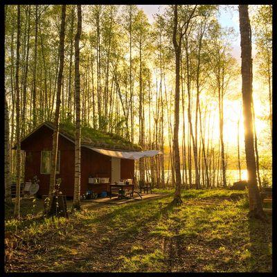 The cabin! Birch Sunset Betarsjön Ångermanland Sweden Visitsweden Swedishmoments