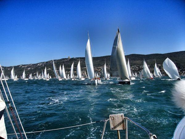 Sailing Trieste Barcolana Italy