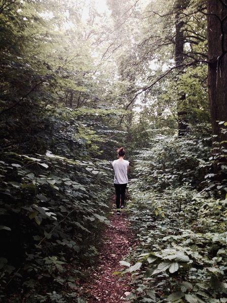 Forest Wood Rain Girl Friend Dog Walk OpenEdit Holiday POV