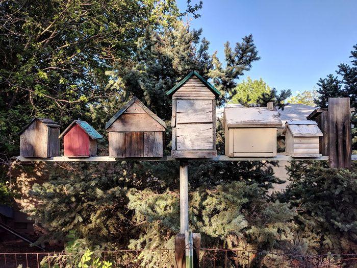 Birdhouses against trees
