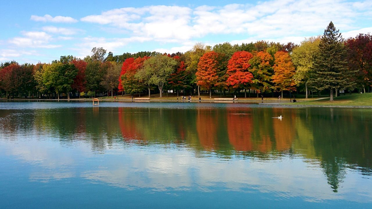 Scenic View Of Trees By Lake Against Sky