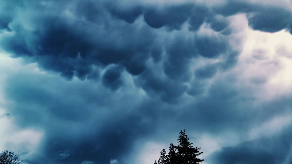 Recent clouds over Newtown Mammatus Clouds Mammatus Mammatocummulus Winter Storm Blue Dark Skies зима Clouds Fury Dramatic Sky Cloud - Sky Weather Storm Storm Cloud Sky Atmospheric Mood Nature Cloudscape Outdoors Silhouette Tree Power In Nature Scenics Day No People Beauty In Nature