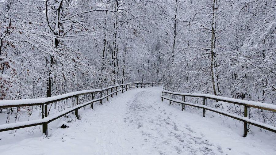 Snow covered footbridge