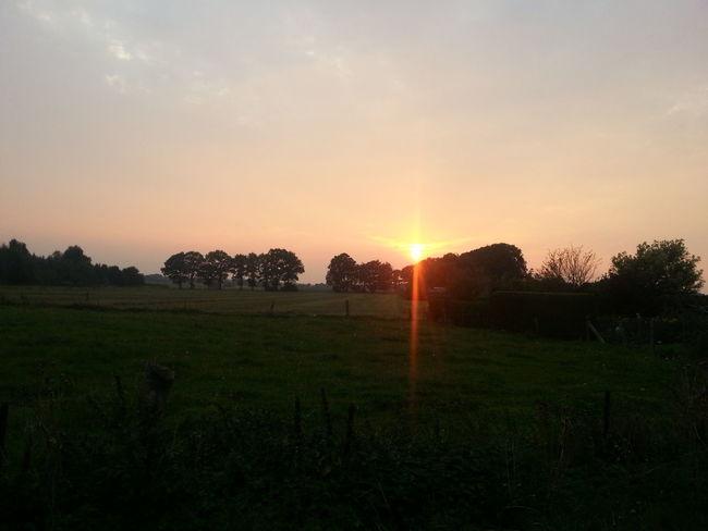 While bbq-ing at my friends house. Dorfleben ist schön... Manchmal. Sunset