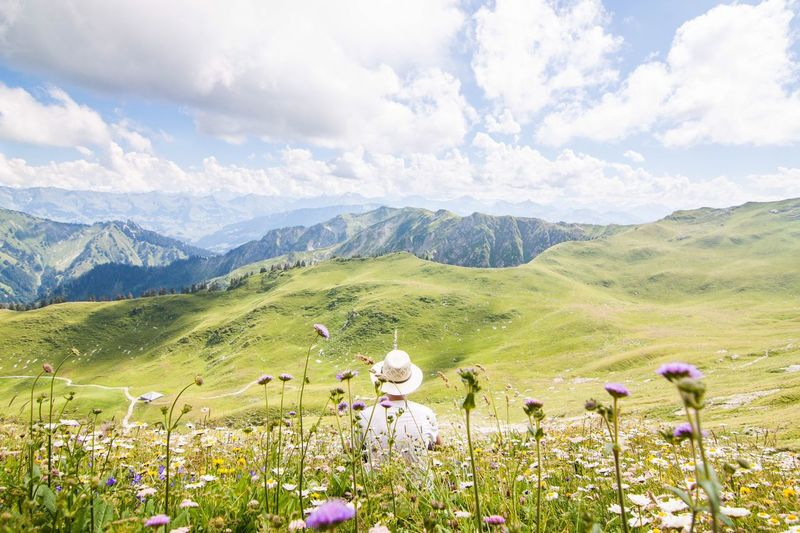 Co.ors from the last mountain spring Flower Nature Beauty In Nature Mountain Outdoors Tranquil Scene Landscape Freshness Schweizer Alpen Gantrisch Colors