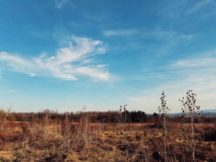 Sky No People Rural Scene Agriculture Outdoors Nature Day Landscape Landscape_Collection EyeEm Best Shots