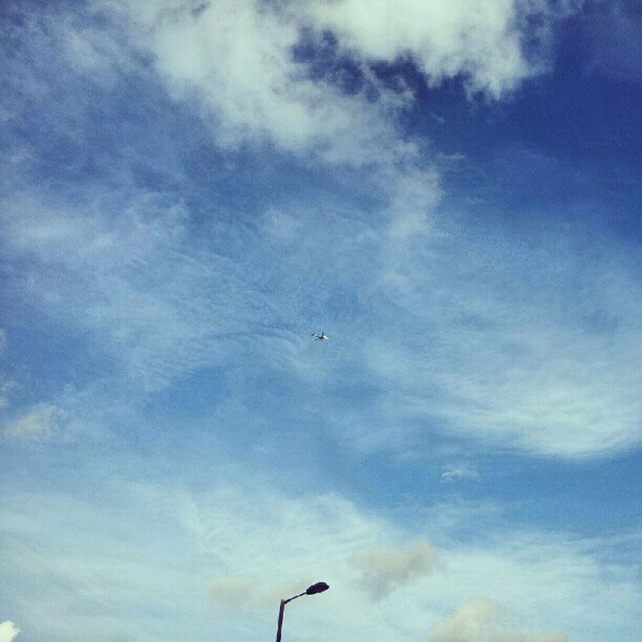low angle view, sky, flying, cloud - sky, bird, animal themes, cloud, cloudy, blue, nature, wildlife, street light, mid-air, silhouette, beauty in nature, outdoors, animals in the wild, airplane, tranquility, day