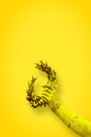 Fame Close-up Colored Background Copy Space Copyspace Cut Out Freshness Fruit Glory Green Color Hand Healthy Eating Laurel Leaves Laurel Wreath Nature No People Plant Plant Stem Wellbeing Winner ! Yellow Yellow Background