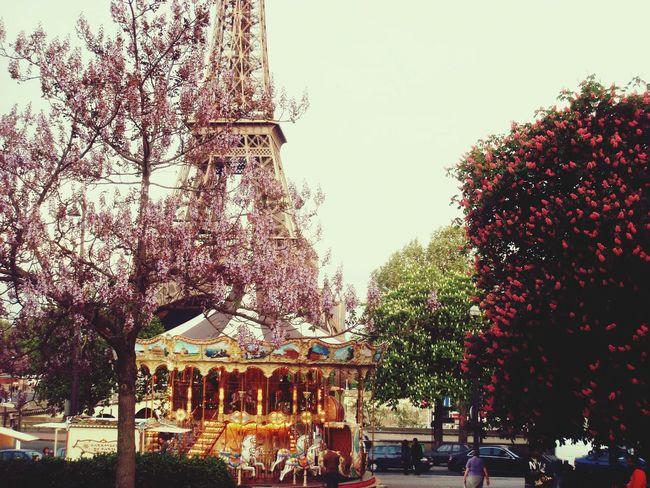 The wonderful Toureiffel ♥♥ Paris The Explorer - 2014 EyeEm Awards The Architect - 2014 EyeEm Awards Adapted To The City Spring Flowers France