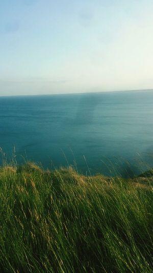 Sea Seaside Nature Cliffs So Pretty Walking Sea And Sky Long Walks Plants 🌱