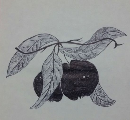 Drawing Drawings Draw Draws