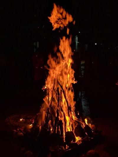 fire Bonfire Tree Flame Heat - Temperature Burning Campfire Illuminated Autumn Orange Color Close-up