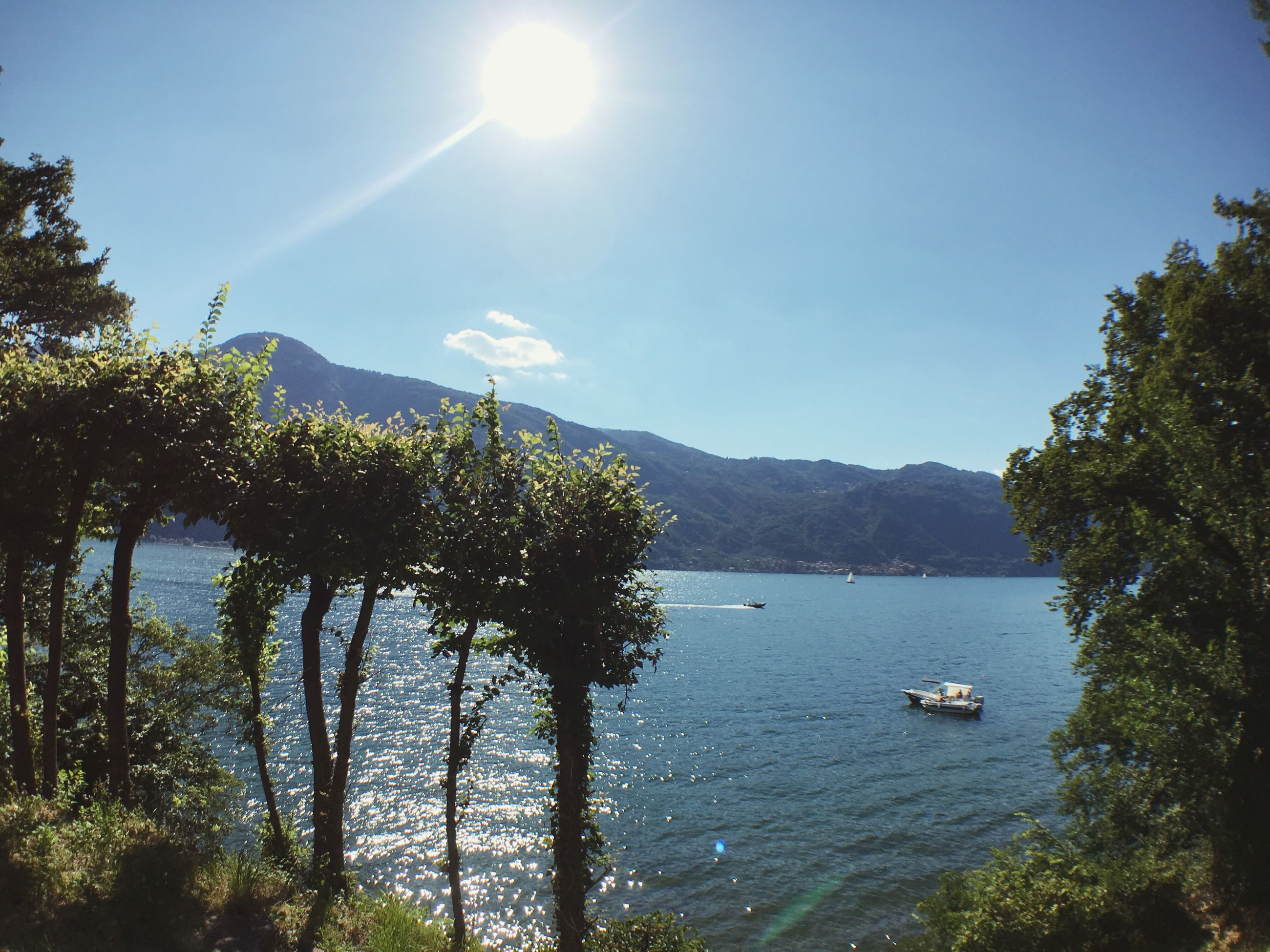 tree, water, nature, sunlight, scenics, nautical vessel, beauty in nature, tranquil scene, tranquility, day, outdoors, lake, mountain, sky, no people, sun