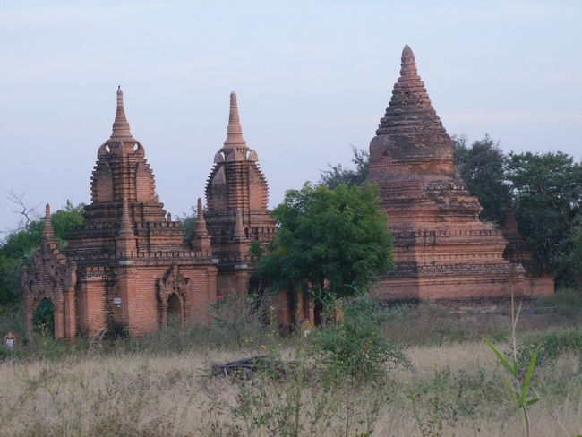 Ancient Temples in Bagan Archaeological Site (13th & 14th century) Ancient Architecture Ancient Civilization Ancient Pagodas Ancient Ruins Ancient Temples Architecture Bagan Blue Sky White Clouds Buddhist Culture Buddhist Pagodas Buddhist Temples Composition Evening Sun History Myanmar No People Outdoor Photography Place Of Worship Religion Spirituality Sunset Tourism Tourist Attraction  Tourist Destination Tree