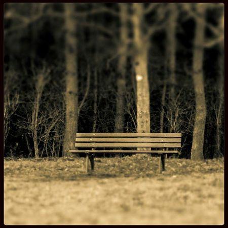 """""""Ich war, bevor Du warst und ich werde sein, wenn Du nicht mehr bist. Gehe Deinen Weg, ich bleibe hier."""" Fotografie Taking Photos Einsamkeit Sepia"""