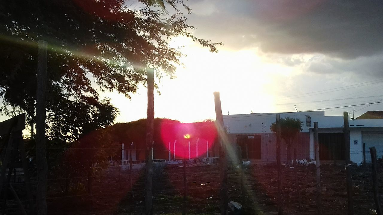 built structure, architecture, building exterior, tree, sky, no people, outdoors, red, day, nature
