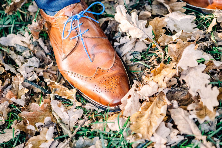 Low section of man on autumn leaves