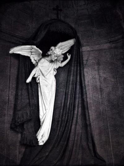 Angel of grief NEM Black&white NEM BadKarma