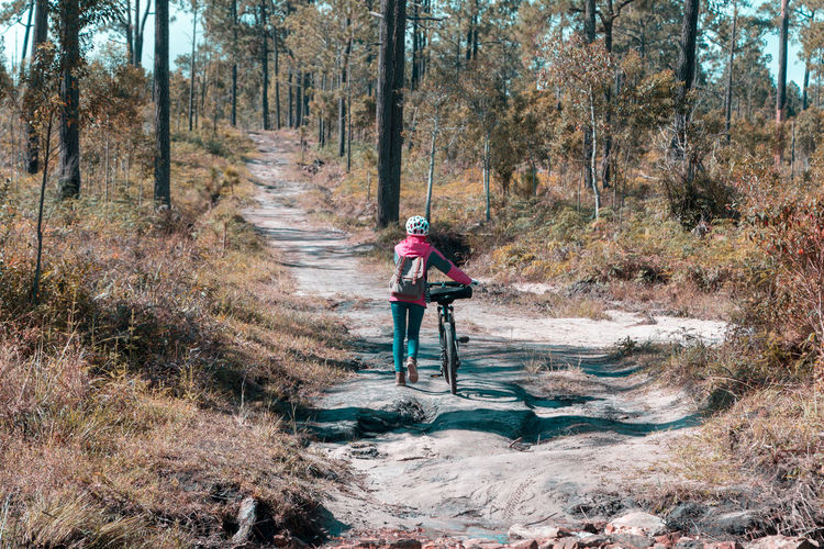 Woman travelling in National Park Tree Bicycle Leisure Activity Plant One Person Lifestyles Land Real People Sport Activity Nature Riding Full Length Transportation Ride Day Forest Adventure Young Adult Outdoors WoodLand Traveling Tourist Nature National Park
