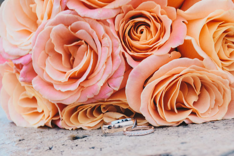 Ready for the ceremony Beautiful Eloped Marraige Romantic Wedding Wedding Photography Bouquet Ceremony Close Up Close-up Closeup Day Elopement Flower Flower Head No People Outdoors Peach Petal Pink Color Rose - Flower Roses Wedding Wedding Ceremony Wedding Ring