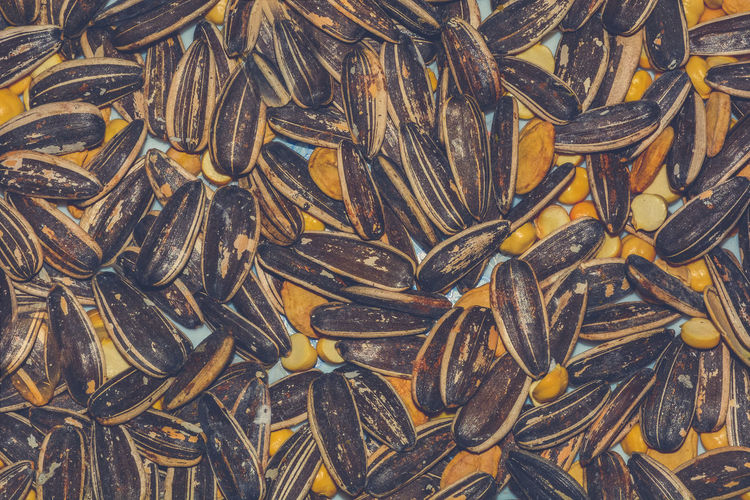 Full frame shot of sunflower seeds