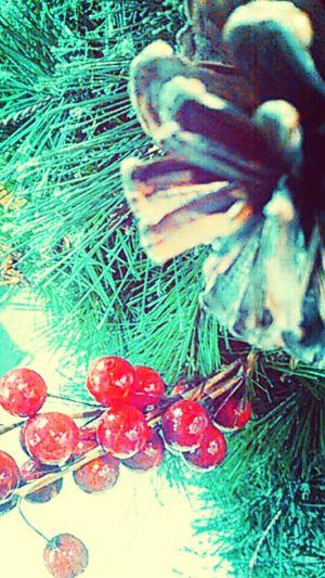 Winter Christmas :)