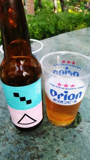 Taiwan Craft Beer 🍻https://www.instagram.com/edgarsunhair/ Taiwanbeer Beer Craftbeer 禾餘麥酒 Orionbeer Drink No People Food And Drink Day Close-up Outdoors Freshness Wine Moments